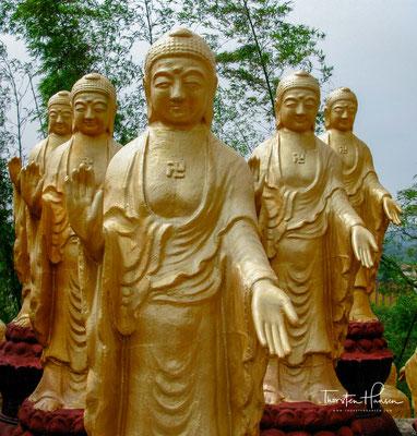 Der Orden gehört zum Chan der durch Linji Yixuan begründeten Linji zong.
