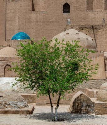 """An einer Wand befindet sich eine Inschrift, die besagt: """"Einige Zeit lebte er in Kaaba (in Mekka) und endlich wendete er sich hierher. Sein Name ist Ala ad-Din, eine einzigartige Perle im Meer der Wissenschaft""""."""