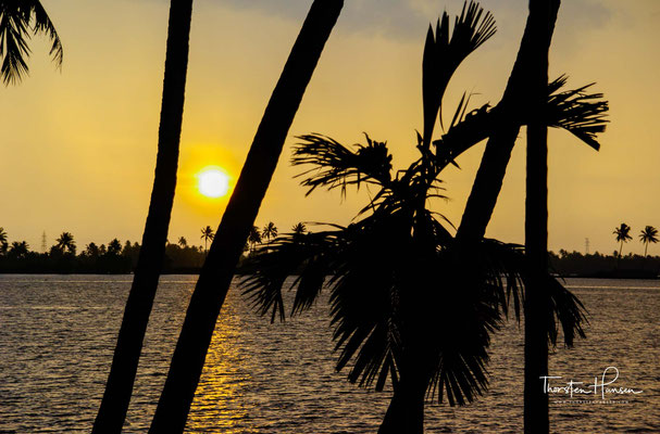 Seit Mitte des 19. Jahrhunderts sind die Backwaters auf etwa ein Drittel ihrer ursprünglichen Größe geschrumpft.
