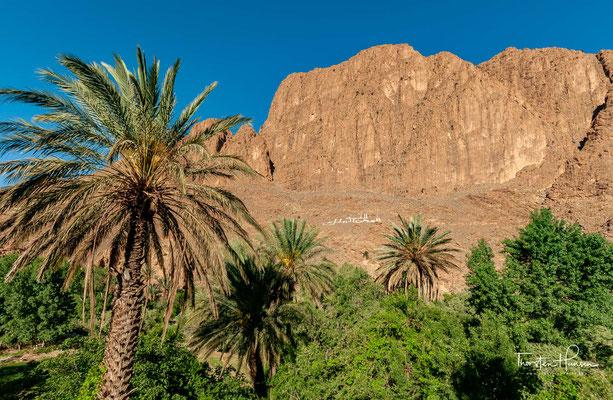 Die Todra-Schlucht (französisch Gorges du Todgha, arabisch مضايق تودغى, Zentralatlas-Tamazight ⵜⵉⵣⵉ ⵏ ⵜⵓⴷⵖⴰ) liegt im nordafrikanischen Marokko im Atlasgebirge.