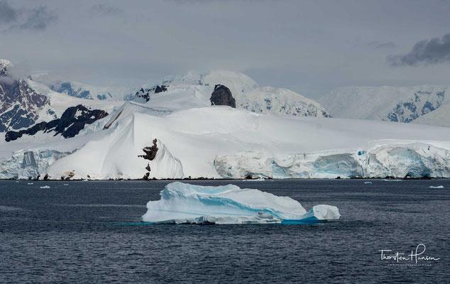 Die Schollaert-Kanal (französisch Chenal de Schollaert) ist eine Meerenge im Nordosten des Palmer-Archipels westlich der Antarktischen Halbinsel.