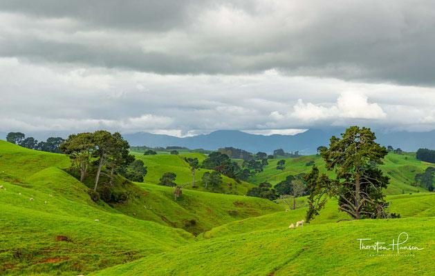 Ursprünglich größtenteils Marschland, wurde es im 19. Jahrhundert durch ein großflächiges Entwässerungssystem umgestaltet und ist heute fruchtbares Ackerland
