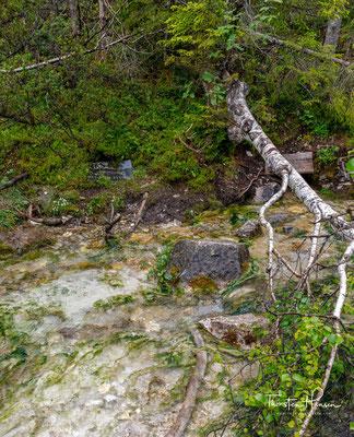 Angesichts des wasserdurchlässigen Karwendelschotters erstaunt es, dass so viele Bäche hier entspringen. Mit 350 Quellen im gesamten Gebiet ist das Karwendel alles andere als wasserarm