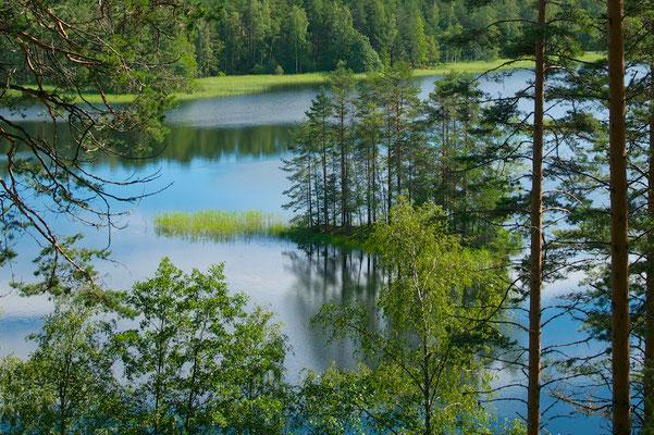 Typische finnische Seenlandschaft