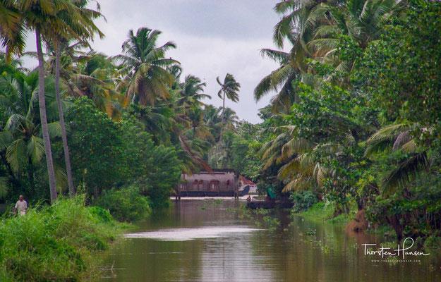 Ein weiteres Problem ist die zunehmende Einengung der Backwaters durch den Menschen.