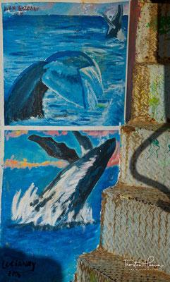 Samaná ist bekannt für sein Whale Watching