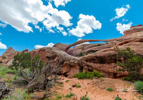 Der Landscape Arch ist mit 92 Metern Spannweite einer der größten Bögen der Welt. Am 1. September 1991 brach ein Felsblock von 18 Meter Länge, 3,40 Meter Breite und 1,20 Meter Dicke aus der Unterseite des Bogens.