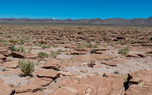 Die Unabhängigkeitsbestrebungen der südamerikanischen Staaten ließen die Atacama an Bolivien fallen.