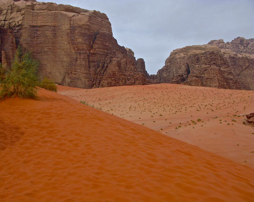 Rote Dünen im Wadi Rum
