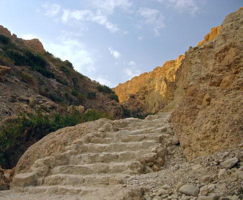 Wanderung zum Wadi David in En Gedi
