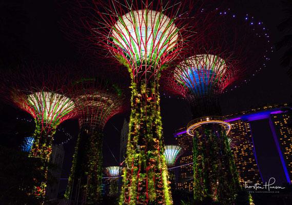 Zwei der Türme werden in luftiger Höhe mit einem Skyway verbunden, den die Singapurische Oversea China Banking Corporation (OCBC) finanziert hat. Nachts werden die Türme beleuchtet und es finden Licht- und Tonshows statt, die die Bank sponsert.
