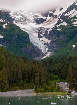 Der Meares-Gletscher gehört zu den wenigen Gletschern, die sich ausdehnen.