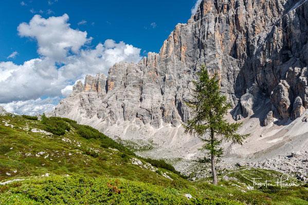 Der Gipfel selbst wurde in den 1860er Jahren durch den Jäger Simeone De Silvestro erstmals bestiegen.