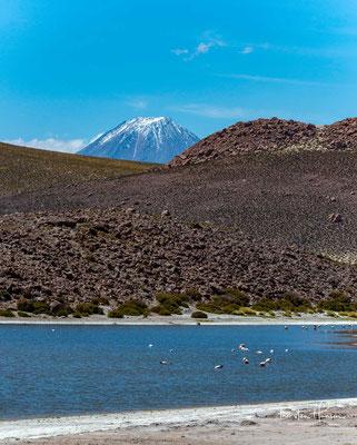 Der Vulkan Parinacota (6348m) und einer der höchstgelegen Seen der Welt, der Lago Chungará (4517m ü.M) in der Nähe von Machuca