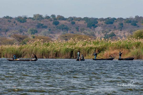 Das Einzugsgebiet umfasst Gebiete in acht Staaten im südlichen Afrika und umfasst etwa 1,33 Millionen Quadratkilometer (km²), was etwa der Hälfte dessen des Nil entspricht.
