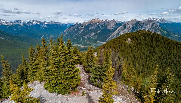 Der Gipfel des Berges bietet einen guten Ausblick auf die nördlich gelegene Ortschaft Banff, wobei der östliche Teil der Gemeinde durch den Tunnel Mountain verborgen wird.