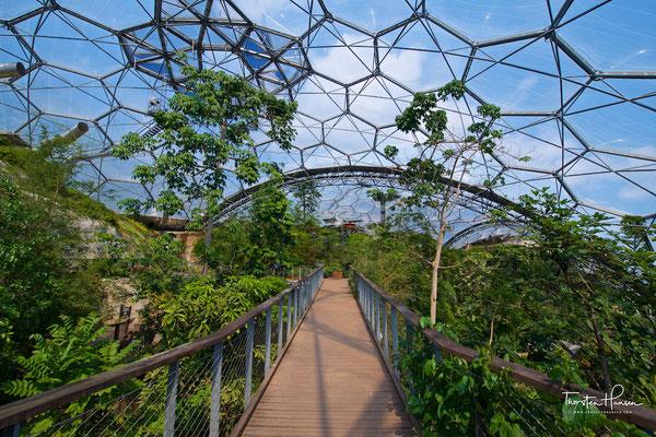 Botanischer Garten Eden Projekt
