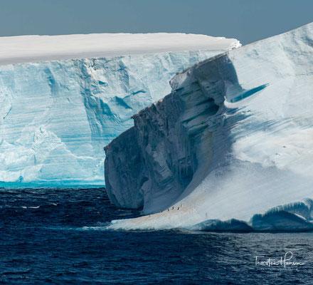 Der derzeit größte dokumentierte Eisberg, ein antarktischer Tafeleisberg, ist im Jahr 1956 im südlichen Pazifik gesichtet worden und war zu Anfang 31.000 km² groß