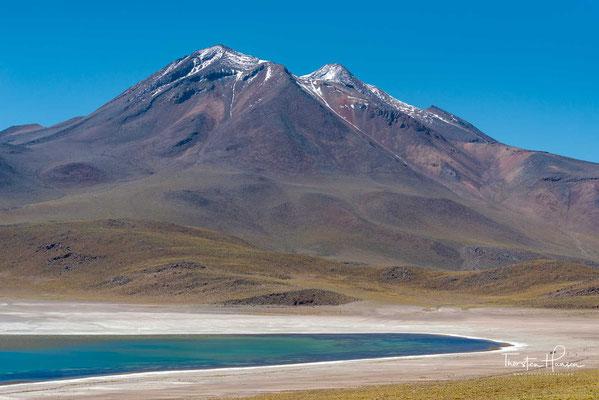 Der See gehört als wichtiges Biotop zum Nationalreservat Los Flamencos. An seinen Ufern nisten Flamingos und die seltene Entenart Tagua Cornuda. Wegen seiner landschaftlichen Schönheit ist er Ausflugsziel für viele tausend Touristen jährlich