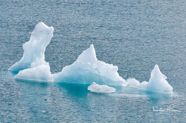 Erste Eisberge auf der Bootsfahrt zum Mears Gletscher