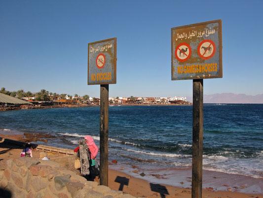 Strand von Dahab