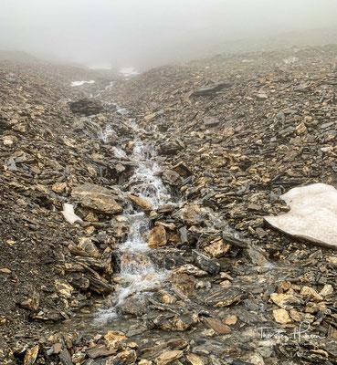 Es ist nicht einfach heute im Nebel und im Regen den richtigen Weg zu finden.