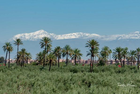 Der Menara-Garten (frz. Jardin de la Ménara; arabisch حدائق المنارة, DMG ḥadāʾiq al-manāra) ist ein öffentlicher Stadtpark in Marrakesch.