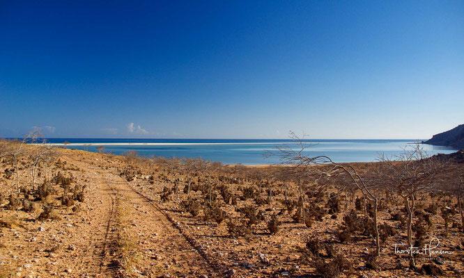 Fahrt zum Qalansiyah Strand und Lagune