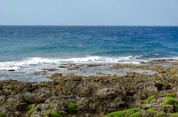 Wie ein kleiner botanischer Garten zieht sich der Weg bis zur Küste und hier erwartet euch eine schöne Aussicht auf die Küstenlandschaft.