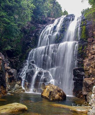Er ist vielleicht nicht der Höchste, aber sicher einer der schönsten Wasserfälle Tasmaniens.