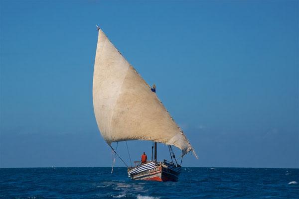 Dhau im Indischen Ozean