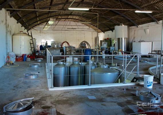 Produktionsanlagen des Weinguts Pizzorno