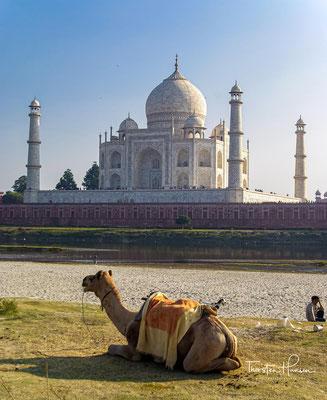 ....das sich auf einer 96 Meter × 96 Meter großen Plattform (jagati) am Südufer des Flusses Yamuna am Stadtrand von Agra im indischen Bundesstaat Uttar Pradesh erhebt.