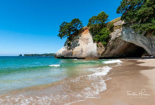 Der Sandstrand mit Schatten spendenden Pohutukawa-Bäumen entlang des Ufers ist ein idealer Ort zum Schwimmen und für ein Picknick.