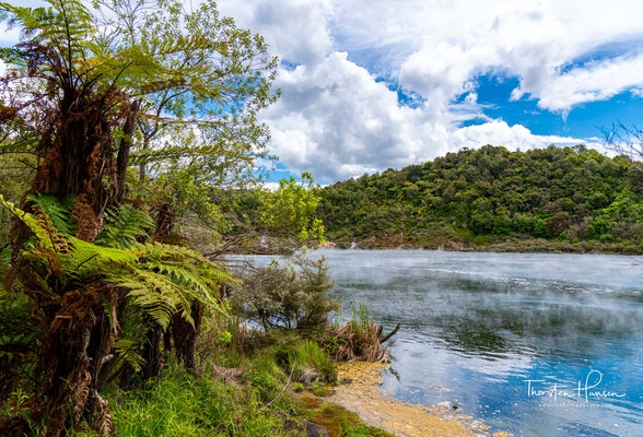 Der Frying Pan Lake ist ein See vulkanischen Ursprungs. Er entstand erst am 10. Juni 1886 durch den Ausbruch des Mount Tarawera.