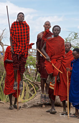Massai beim Sprung-Tanz