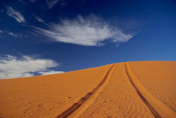Spuren im roten Wüstensand