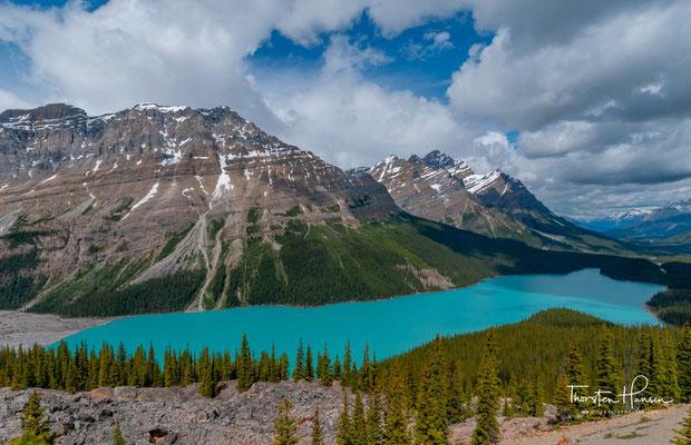 Der Peyto Lake wurde nach Bill Peyto (ausgesprochen Pee-Toe) benannt, einem bekannten Trapper und Bergführer Ende des 19. Jahrhunderts.