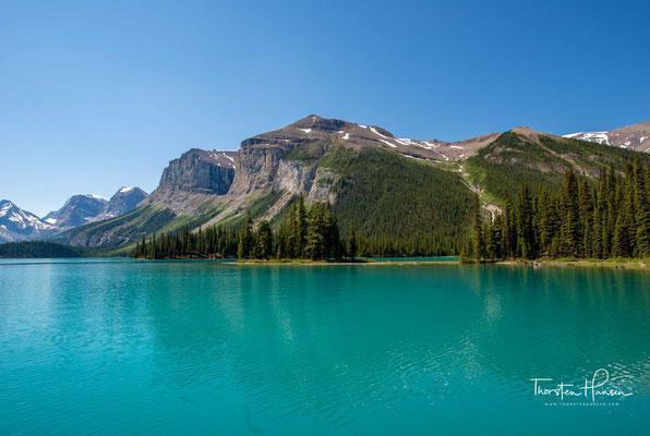 Er wird vom Maligne River, einem Nebenfluss des Athabasca River, mit Gletscherwasser gespeist und seine Temperatur steigt nie über 4 °C.