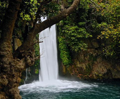 Banyas bezeichnet einen der drei Quellflüsse des Jordan sowie ein nach dem Fluss benanntes Naturschutzgebiet auf den Golanhöhen