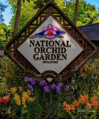 Singapore Botanic Gardens (Botanische Gärten von Singapur) ist einer der wichtigsten Botanischen Gärten Asiens