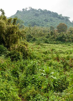 Nach der Unabhängigkeit des Kongos wurde der Albert-Nationalpark 1969 geteilt.