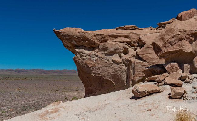 Die Petroglyphen von Yerbas Buenas