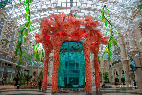 Aquarium im MGM Casino, Macau
