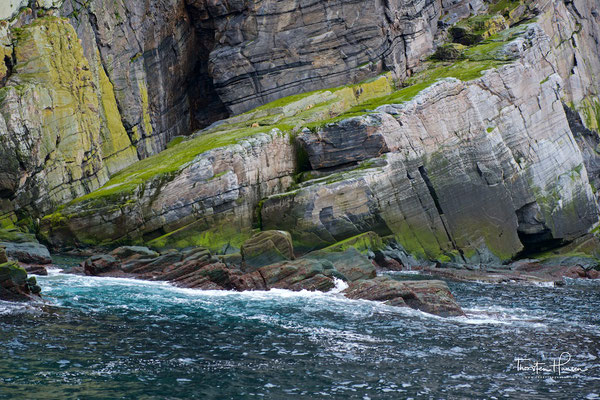Die Umweltschutzbehörden sind sehr daran interessiert, die größte Papageitaucherkolonie der Finnmark zu schützen. Die Eissturmvögel, deren Anzahl stetig zunimmt, wurden erstmals 1978 beobachtet. In den achtziger Jahren ließen sich die Tölpel auf der Gjesv
