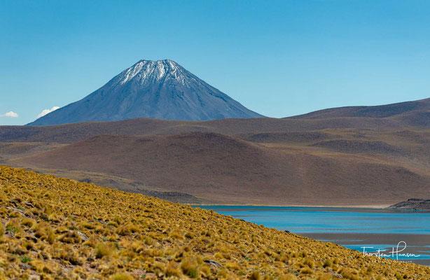 Die Laguna Miscanti - Der See liegt auf 4140 m Höhe in der Puna der Anden am Fuß des Vulkan Miscanti (5622 m).