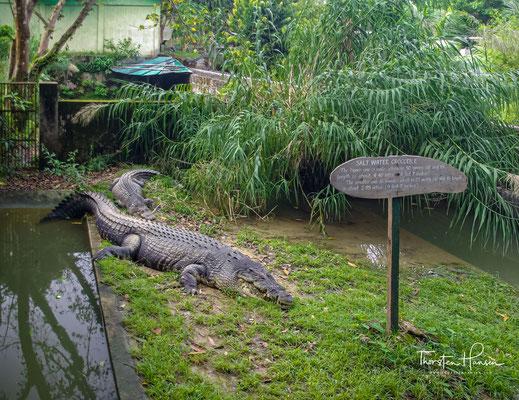 Der traurigste Zoo der der Welt in Port Blair