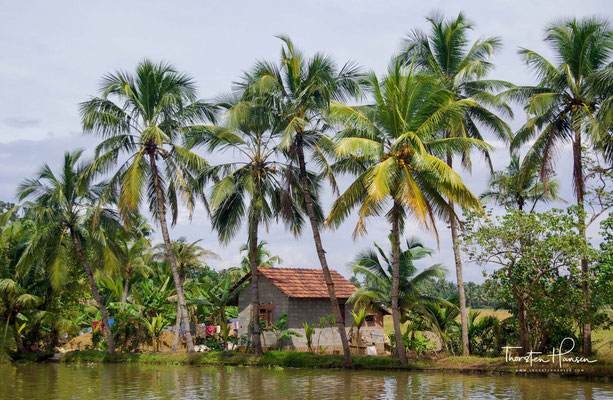 Seit einigen Jahren nimmt die Bedeutung der Backwaters als Reiseziel vor allem ausländischer Urlauber stetig zu.