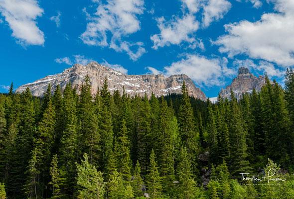 Das rasche Wachstum der Stadt Banff in den letzten Jahren hat die Befürchtung genährt, die unberührte Natur des gleichnamigen Naturparks könnte Schaden nehmen.