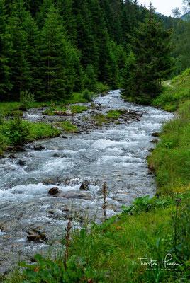 Die Wanderung führt mich heute als erstes durch das ruhige und schöne Voldertal und entlang des Volderbaches, bis hoch zum Naviser Jöchl